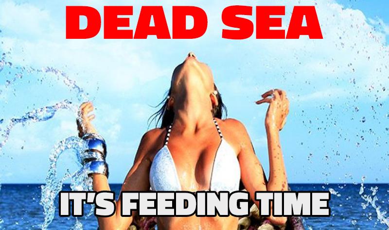 Dead Sea 2014
